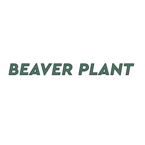 Dealers Beaver Plant